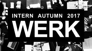 Intern_WERK_spring 2017b-V1